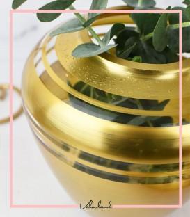 گلدان طلایی رکسانا