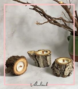 شمع چوبی تنه درختی