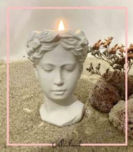 مجسمه دکوری وارمر ونوس
